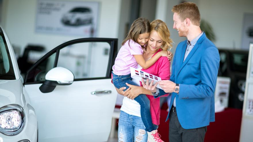 Nationwide Wholesale Car Search For Dealers